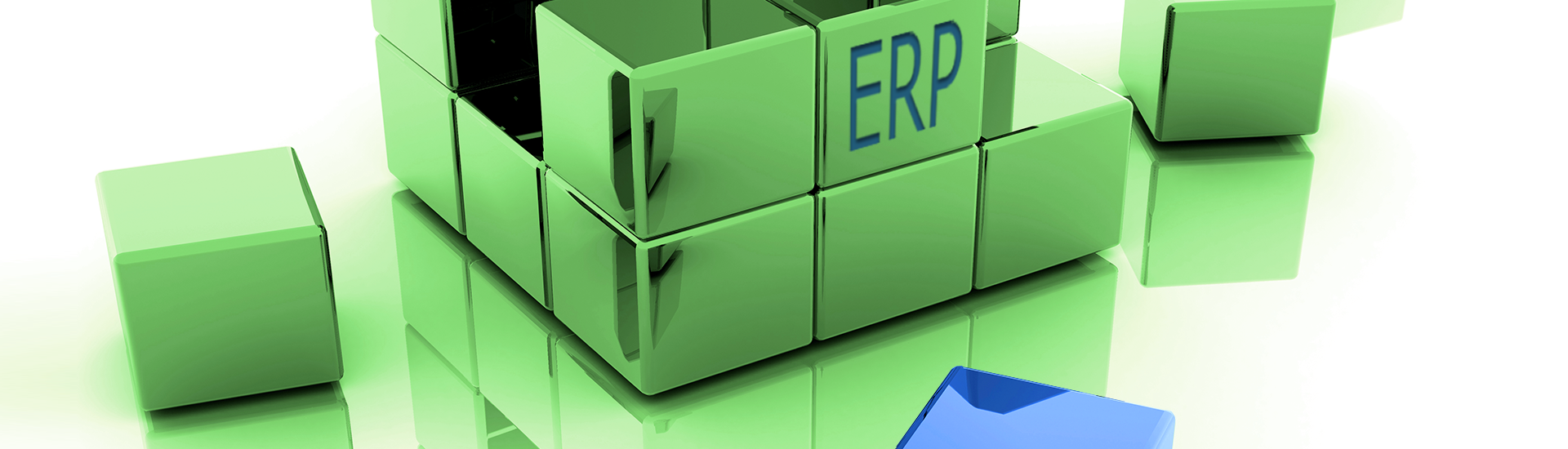 ERP Services | Westernacher Consulting