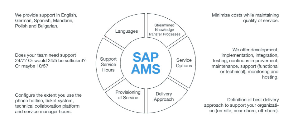 SAP Application Management Service SAP AMS